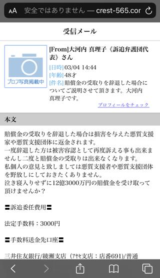 被害者救済機構窓口の大河内真理子さんからの辞退説明メール