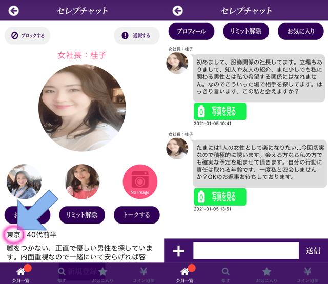セレブチャットにて東京に現れたサクラの「女社長:桂子」